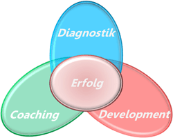 Diagnostik / Erfolg / Coaching / Development